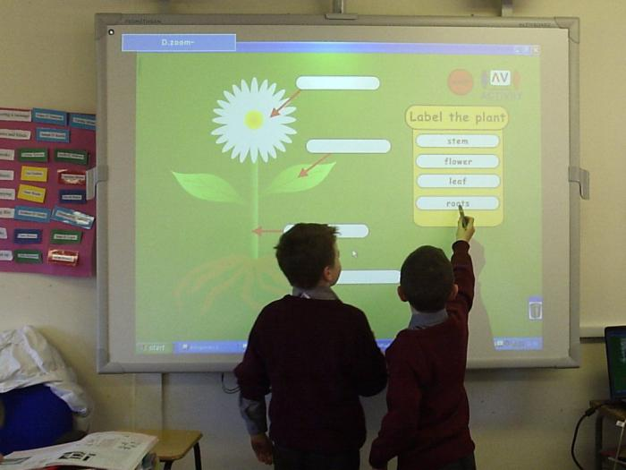интерактивная доска board