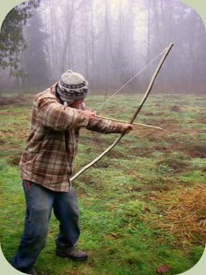 какой лук лучше для охоты