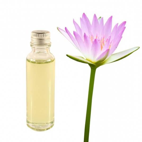 Лотоса масло эфирное: состав, полезные свойства, применение