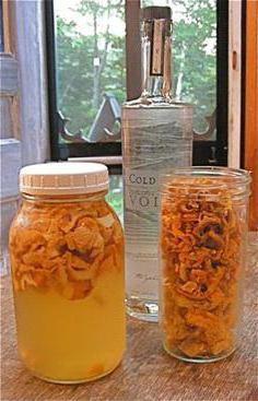 настойка из свежих лисичек на водке