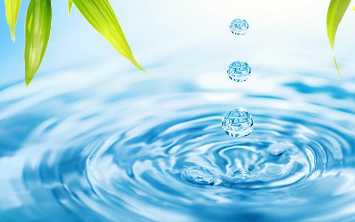 Анализ сточных вод предприятия