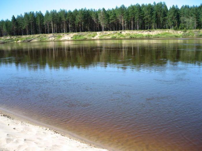 река ветлуга рыбалка