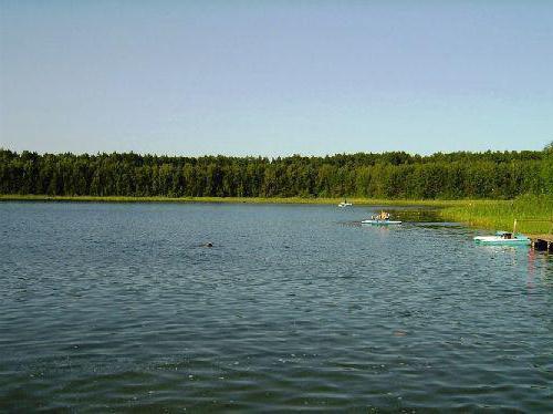 озеро линево курганская область как проехать