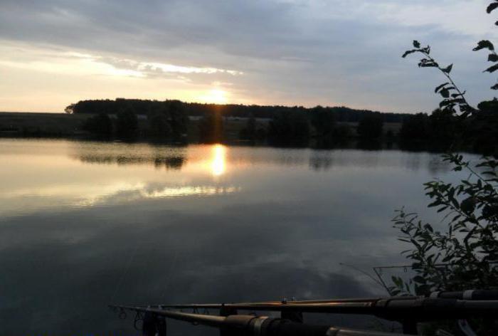 озеро линево курганская область шумихинский район