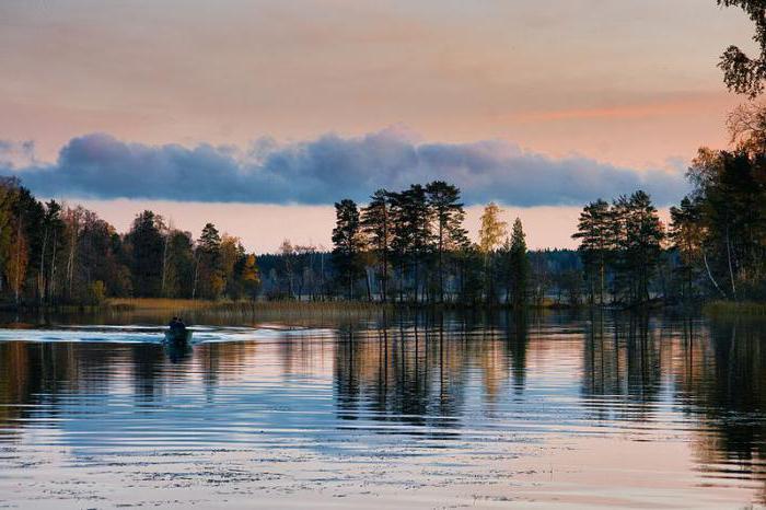 глубокое озеро ленинградская область