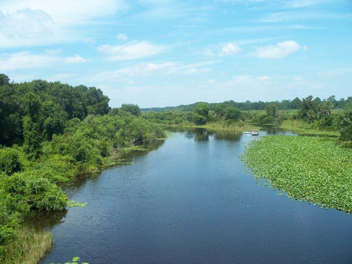 части реки и их определения