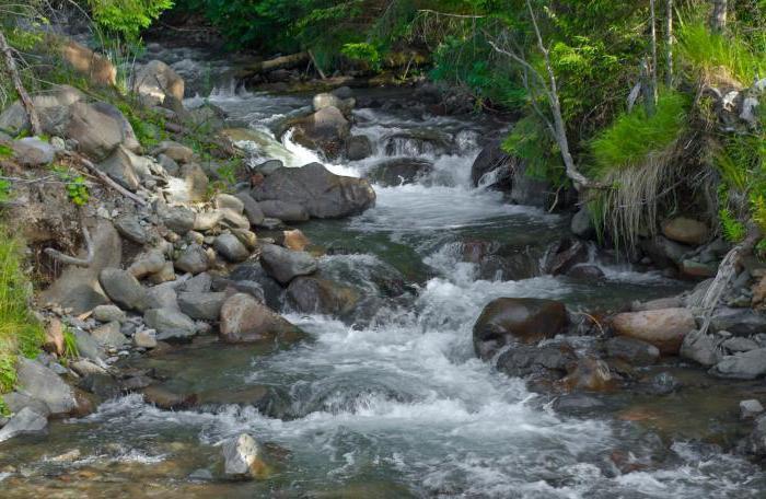 части реки речная система