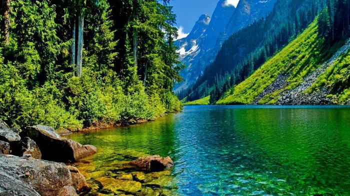 равнинные реки и горные в чем разница