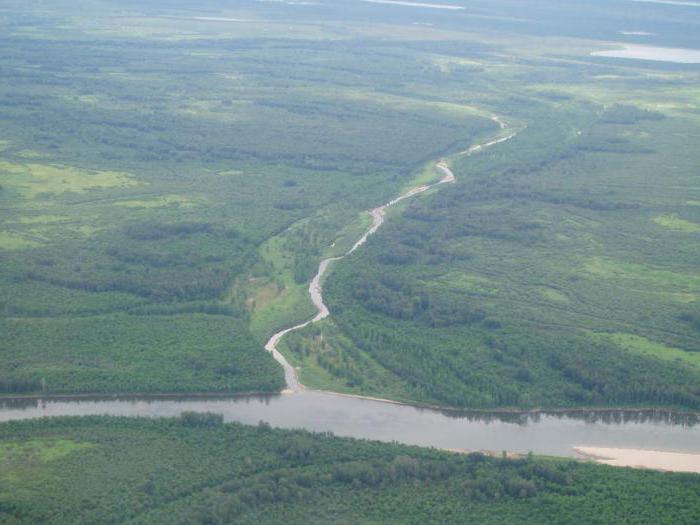 равнинные реки и горные разница