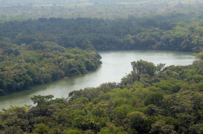 равнинные реки и горные реки