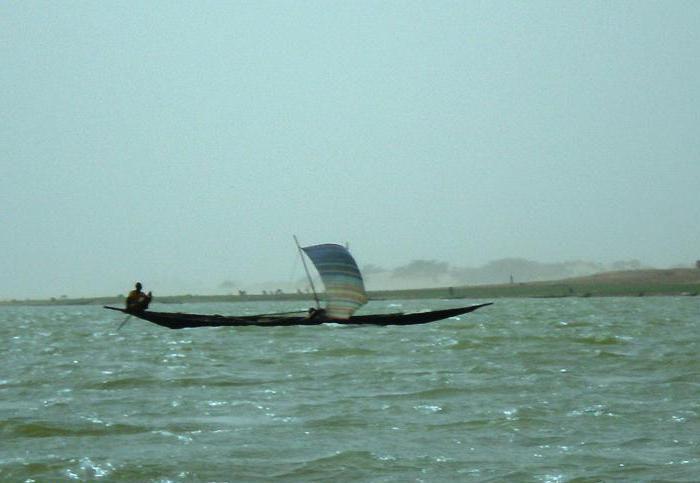 как режим реки нигер зависит от климата