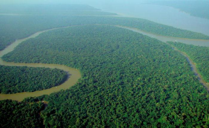 географическое положение амазонской низменности
