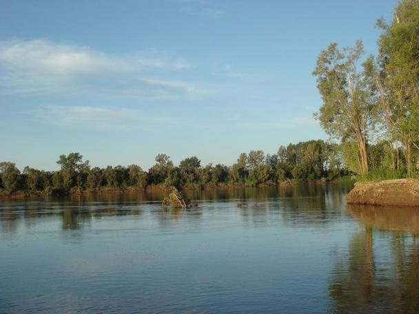 рыбалка на реке кия