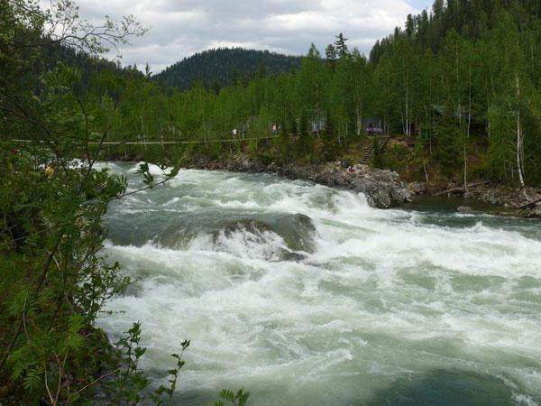 река кия кемеровская