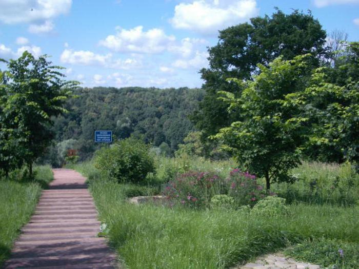 парк долины реки сходня