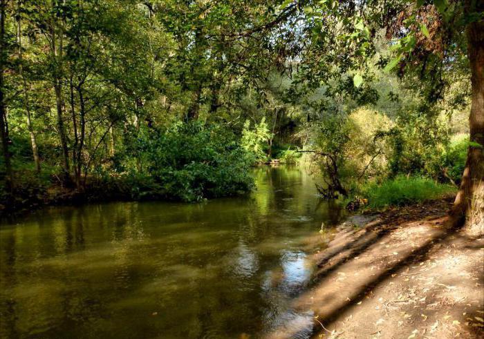 природный парк в долине реки сходня