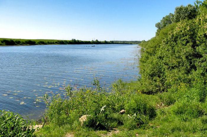 река проня рязанской области