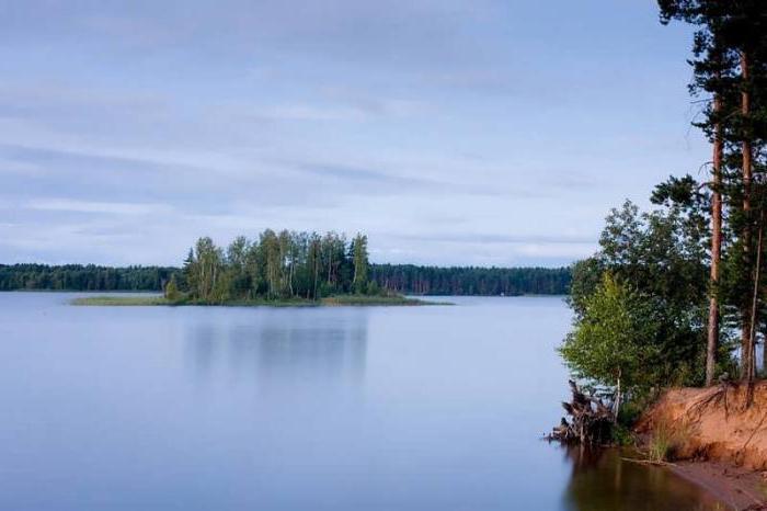озеро велье новгородская область