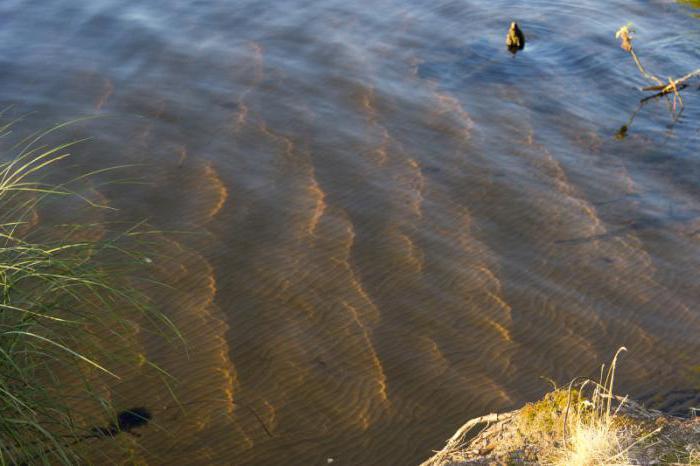 озеро велье как доехать