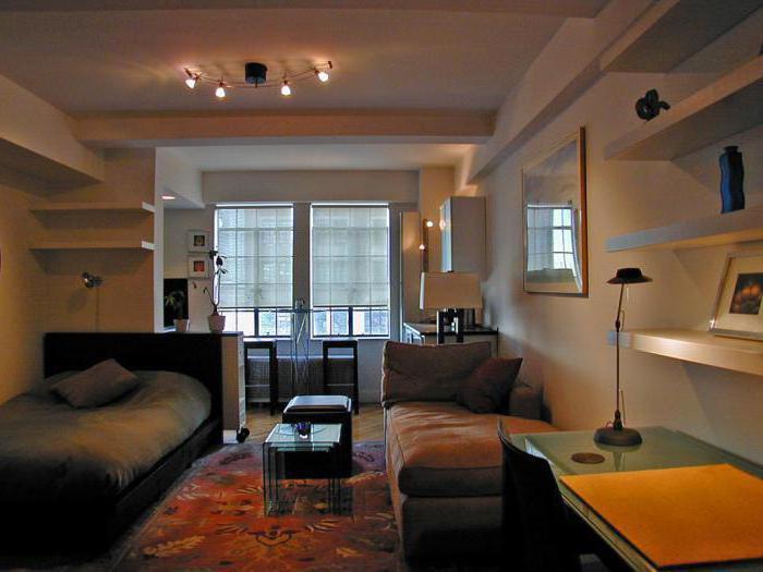 интересные идеи для однокомнатной квартиры фото