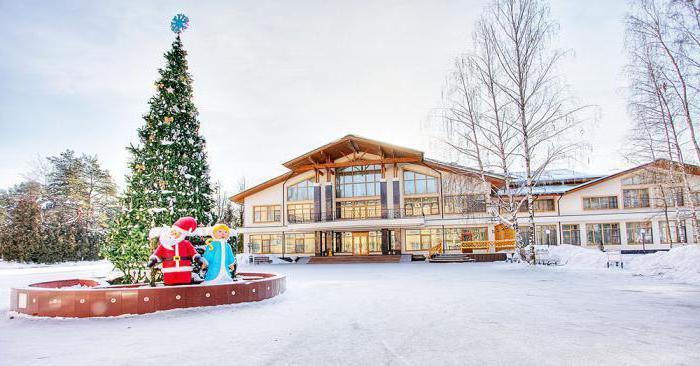 Отель на новый год 2017 с детьми