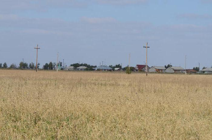 функциональное белье погода полевое ннр алтайский край своему виду термобелье