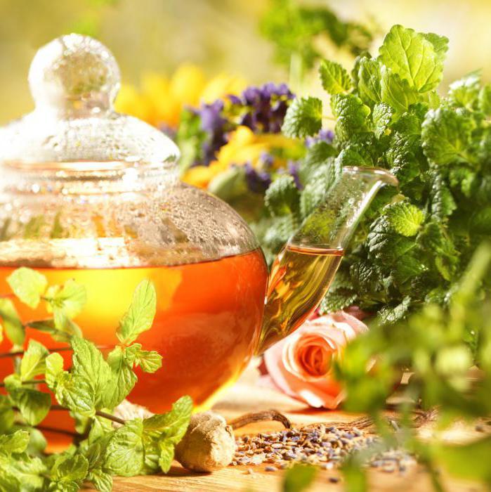 чай от паразитов рецепт