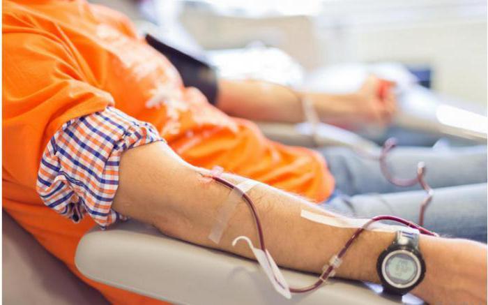 Звание «Знатный донор Рф». Как стать знатным донором Рф?