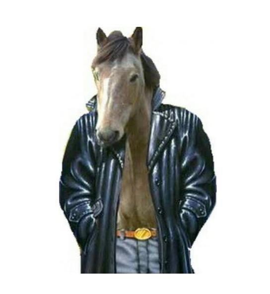прикол картинки конь в пальто проекта цены