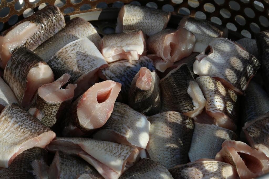 сколько нужно варить рыбу