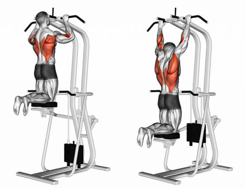 Упражнения на ширину спины: виды, пошаговая инструкция выполнения, регулярность занятий и результат