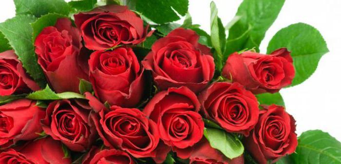 поздравления для женщины коллеги на юбилей 55 лет в прозе