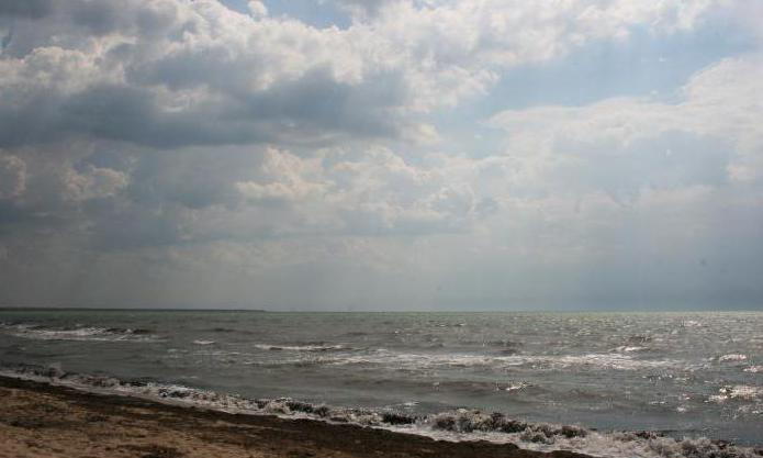 Заниматься сексом в азовском море