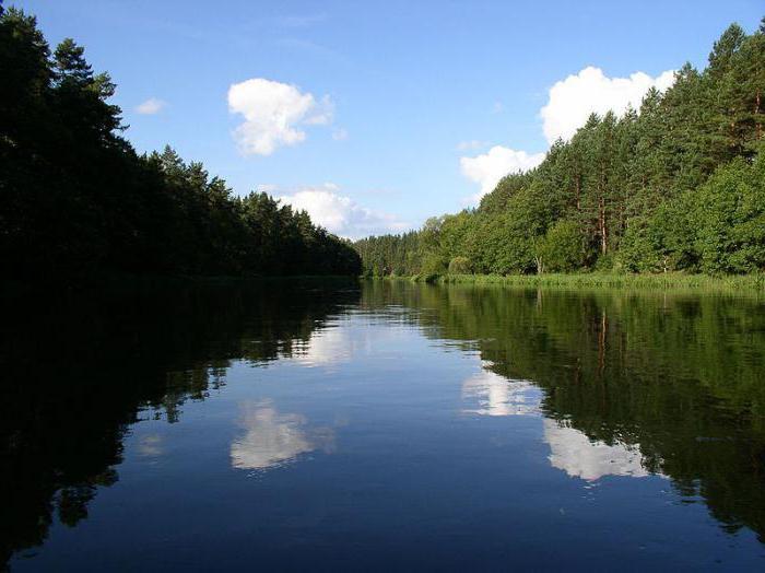 Река Вилия: описание