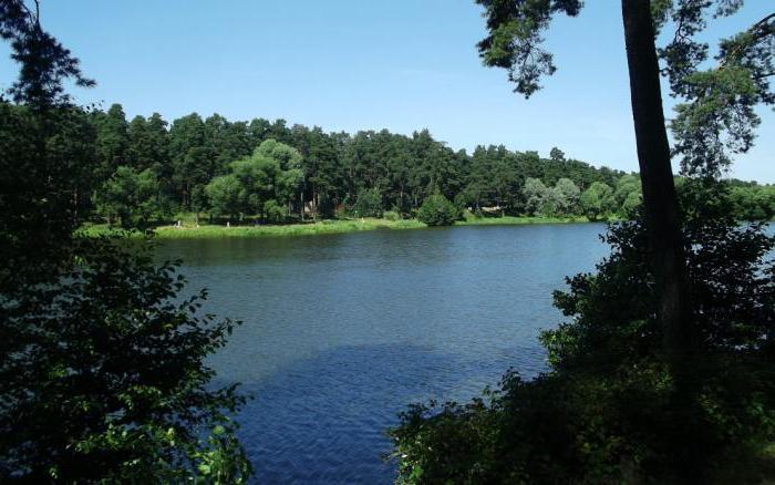 Кратовское лесное озеро