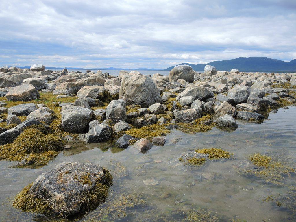 фото залива белого моря мурманская область стал знаменит