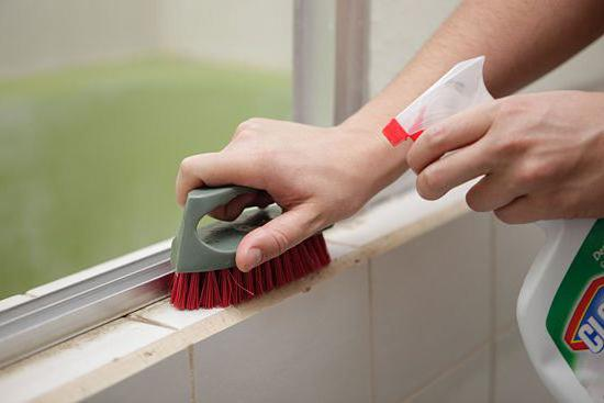 как удалить плесень на стенах в квартире