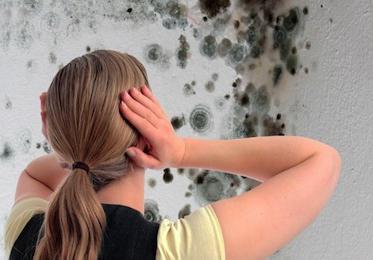 как убрать плесень на стенах в квартире белизной