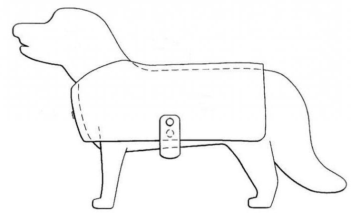 Как сделать своими руками попону для собаки