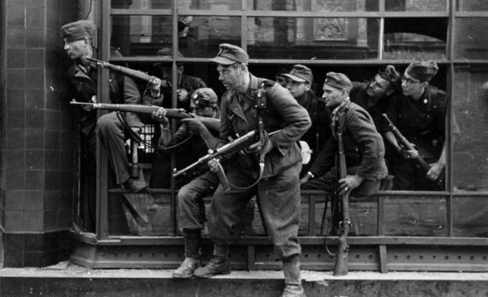 Солдаты войск СС