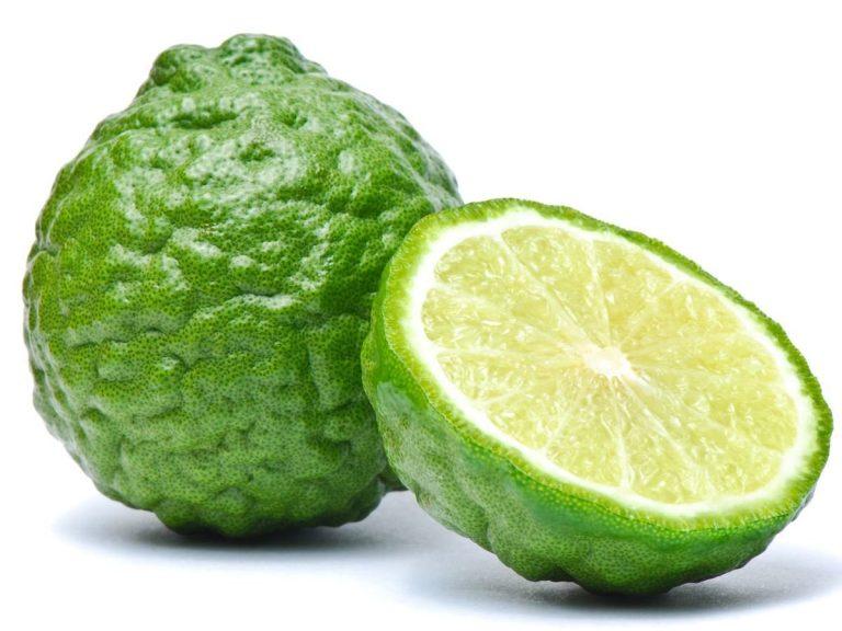 плод каффир лайма