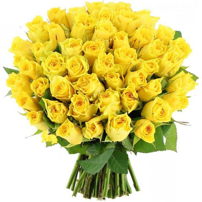 количество и цвет роз в букете значение