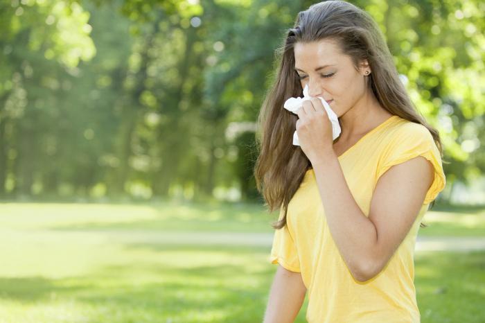 на что бывает аллергия у вислоухой
