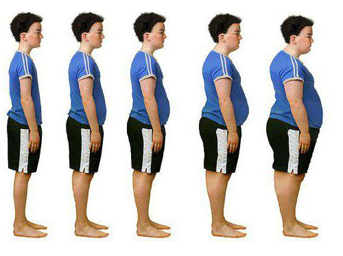 рекомендации по профилактике ожирения