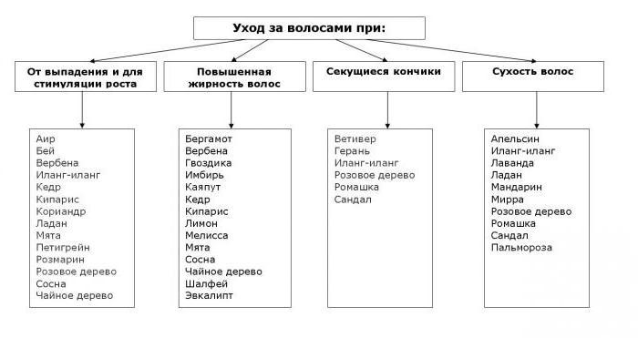эфирные масла список и свойства таблица