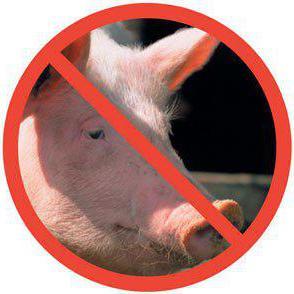 Почему мусульмане и евреи не едят свинину