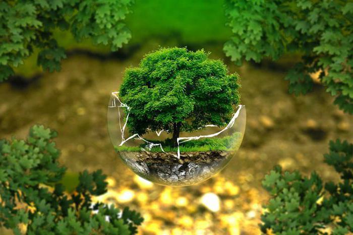 мероприятия природоохранной деятельности