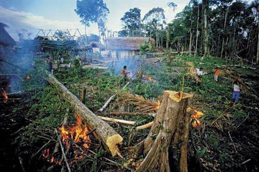 расчет предотвращенного экологического ущерба пример