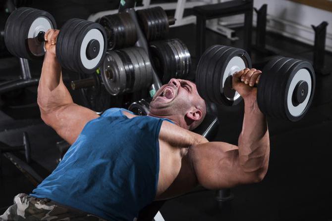 Как прокачать грудные мышцы