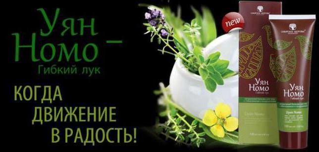жидкий лук в сибирском здоровье